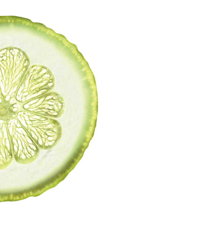 citron-home-middle-left.png
